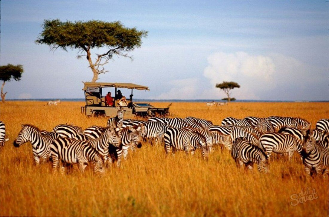 What are the most interesting national parks in Kenya