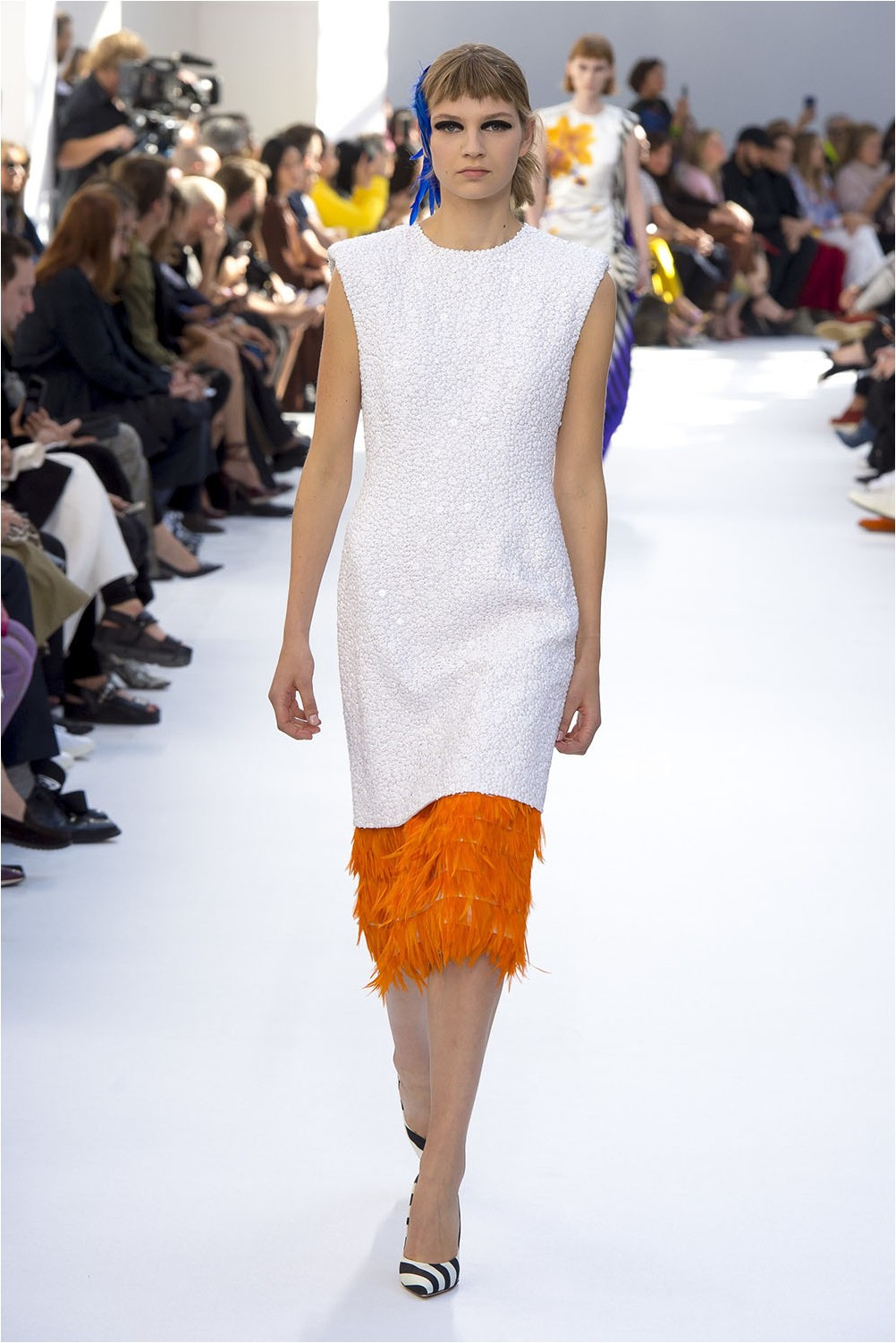 Dries Van Noten Down and Feathers
